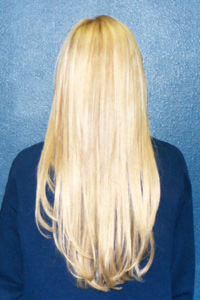 hair extensions from the back